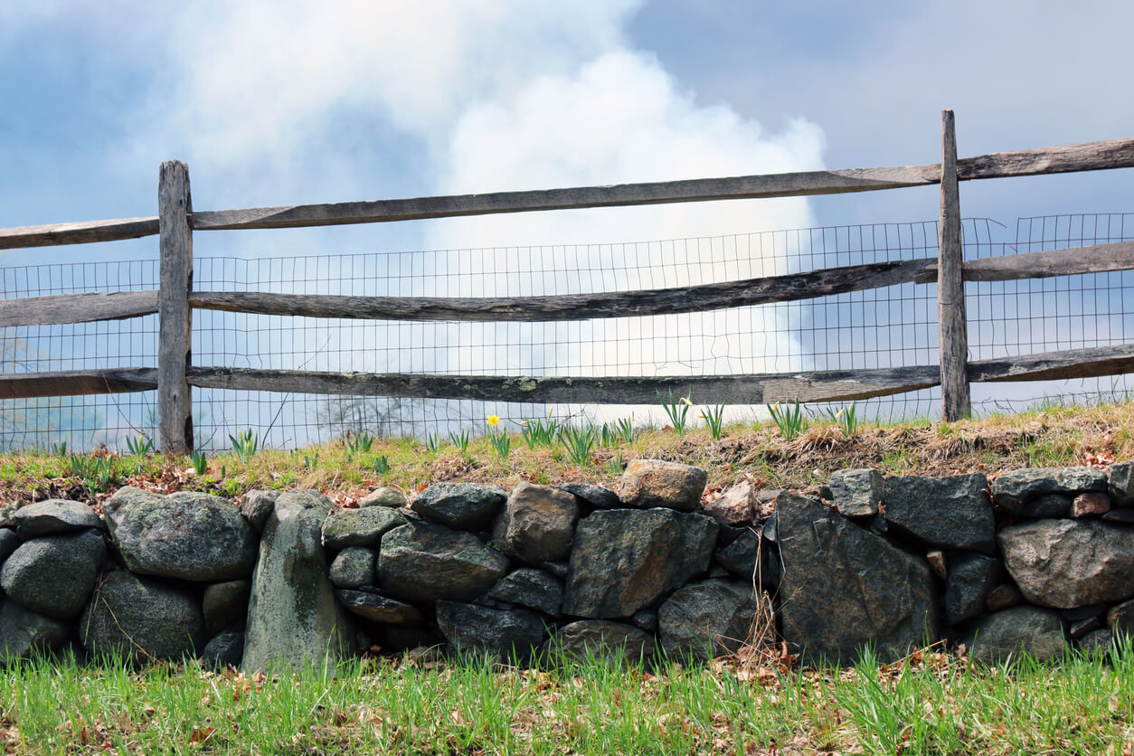 chicken wire farm fence with looming sky