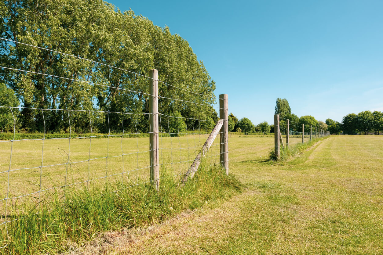 field with simple wood post and wire fencing running down middle.