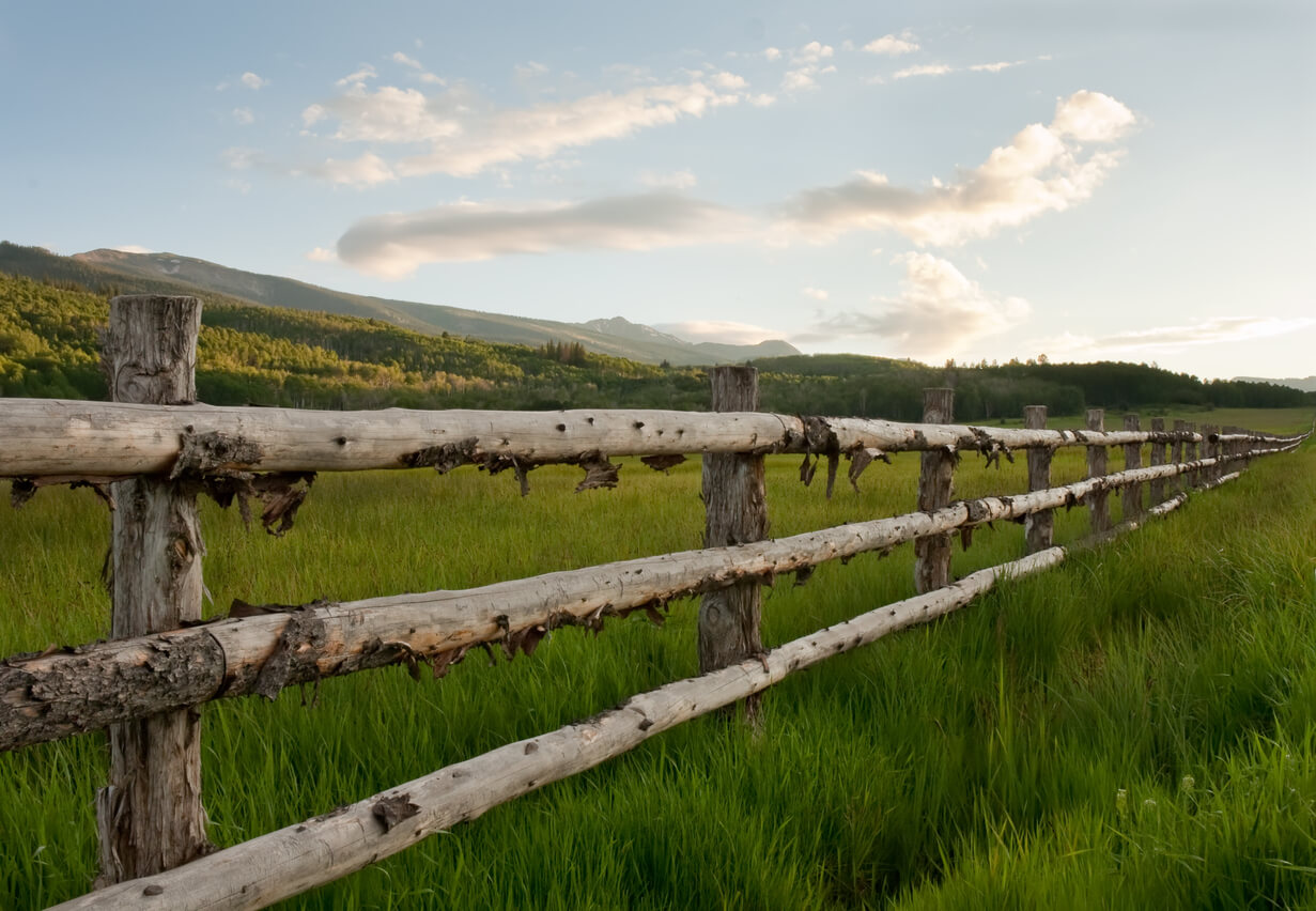 Log Wood fence at sunset in the Rocky Mountains
