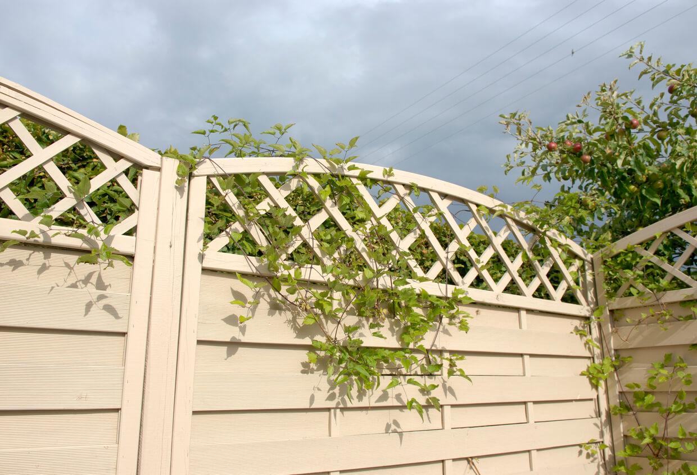 Beige wood panel garden fence.