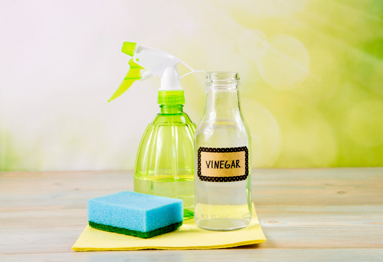 Chemical free home cleaner products concept. Using natural destilled white vinegar in spray bottle to remove stains.